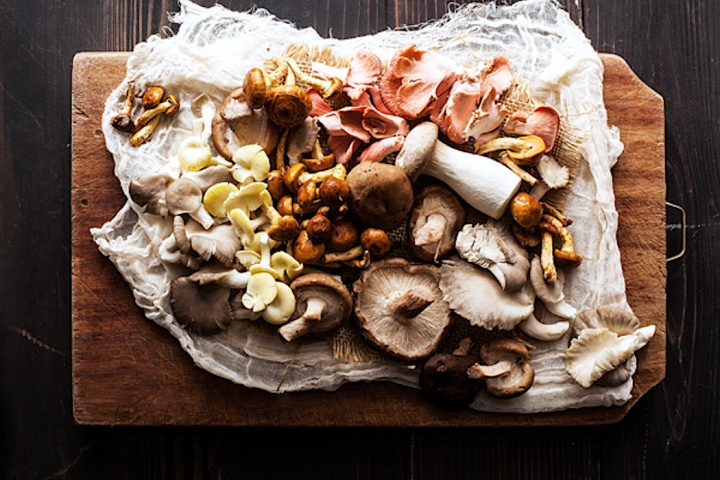 The Benefits of Adding Mushroom Supplements to Your Diet